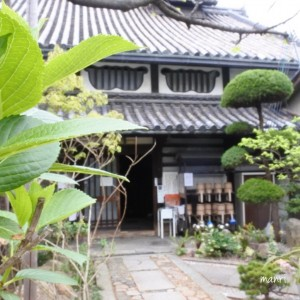 manriスタッフの休日 銀山寺