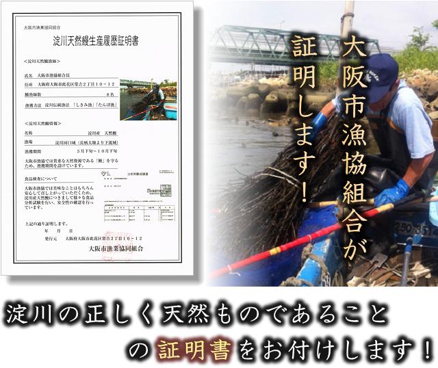 大阪市漁協がホンモノ保証