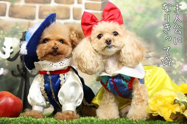 白雪姫&王子様
