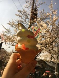 ソフトクリーム アイス 遊膳茶屋 嵐山 京都 観光  食べ歩き ミルク 抹茶 美味しい インスタ映