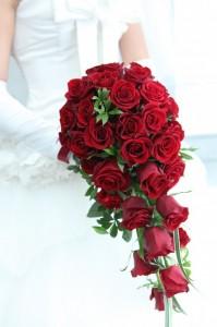 赤バラの花言葉や意味
