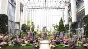 淡路島のおすすめスポット「奇跡の星の植物館」