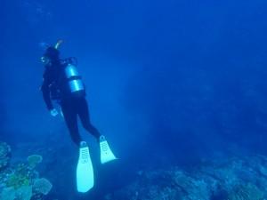 海 ダイビング マリンスポーツ 夏 冬 ウェットスーツ
