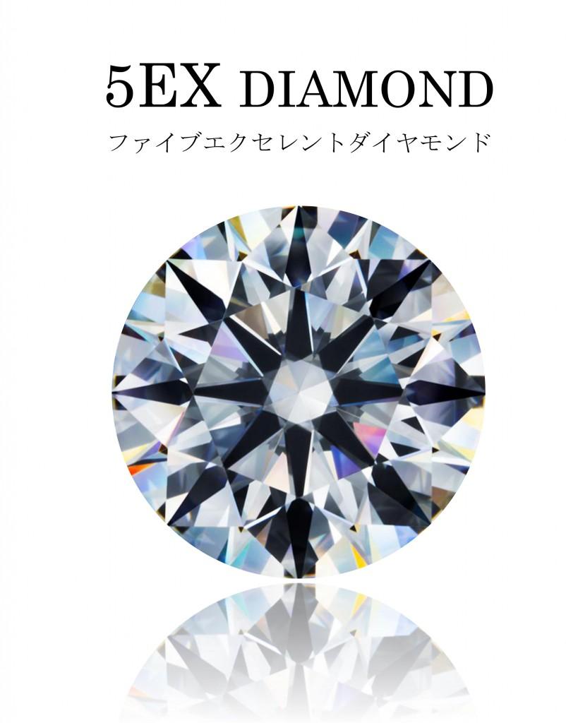 5EXDIAMOND パンフレット-1