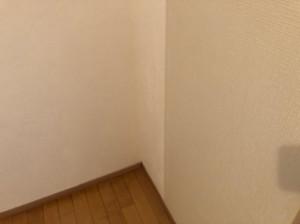 イスズハイツベル仁川102号室_190827_0013