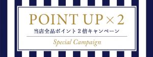 pointupx2-nomal
