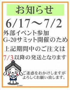 side-20190616g