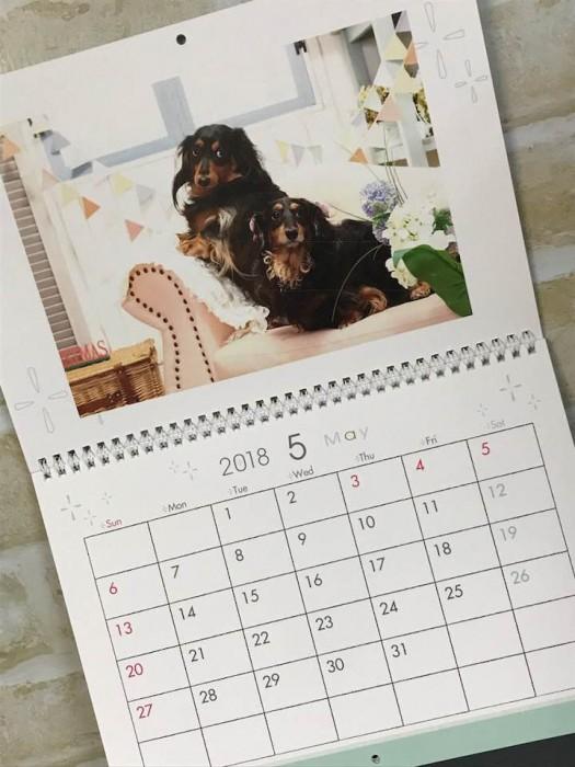 ダックス カレンダー