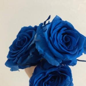 ブルーに染められたブルーのお花