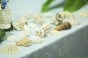 貝殻を使用した会場コーディネート