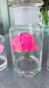 バラを楽しめる女子会にオススメのカフェ