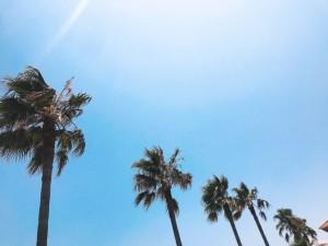 夏のアウトドア☆海に行ってきました