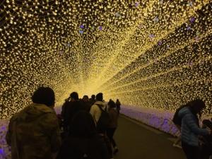 『なばなの里』の光のトンネル