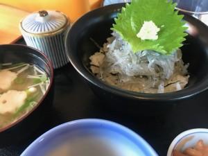 淡路島の名物「生しらす丼」