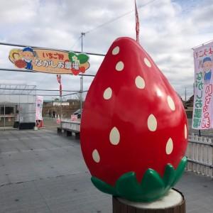 ながしお農場にある大きなイチゴのオブジェ